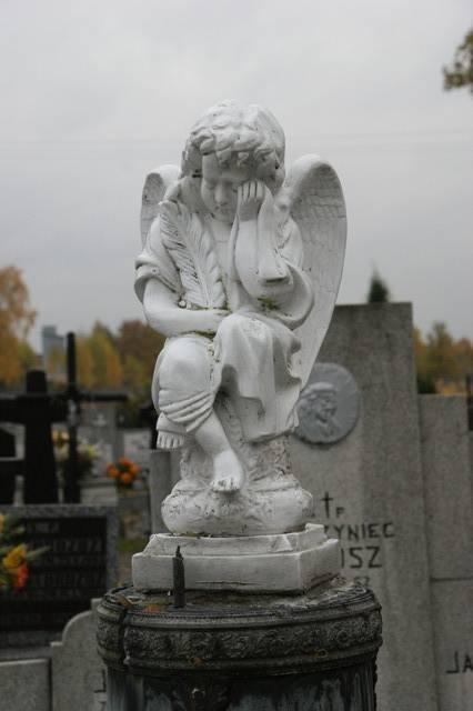 2009_10_29.jpg