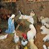 12.2010 Szopka na Boże Narodzenie